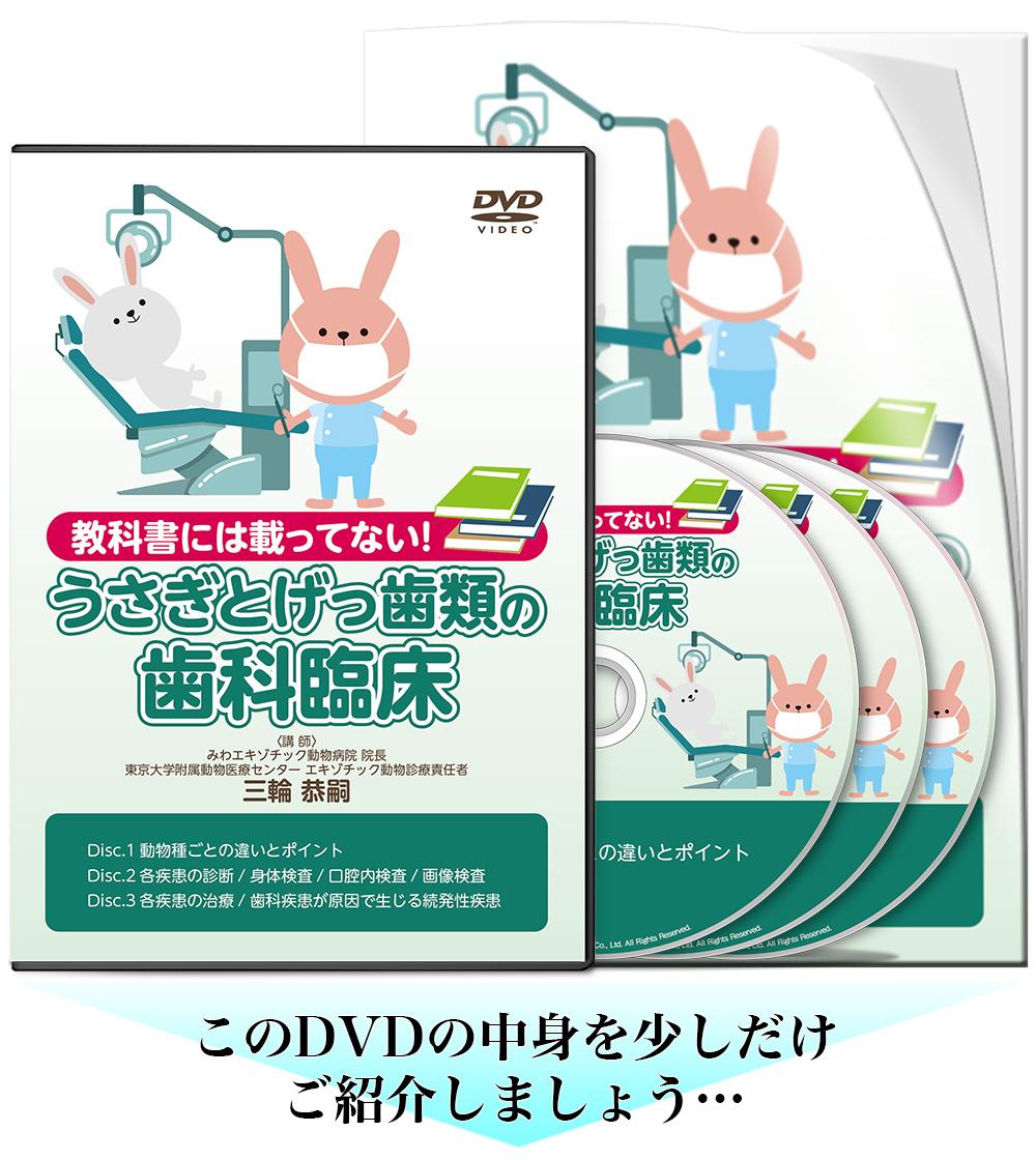 ウサギとげっ歯類の歯科疾患