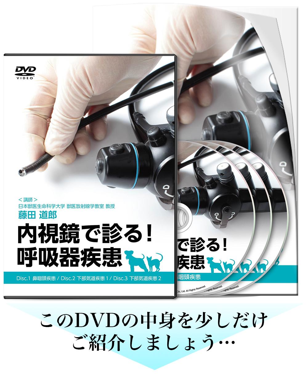 内視鏡で診る! 呼吸器疾患