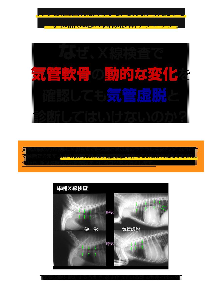 日本獣医画像診断学会 会長が解説する「呼吸器疾患の画像診断テクニック」 なぜ、X線検査で 気管軟骨の動的な変化を 確認しても気管虚脱と 診断してはいけないのか?