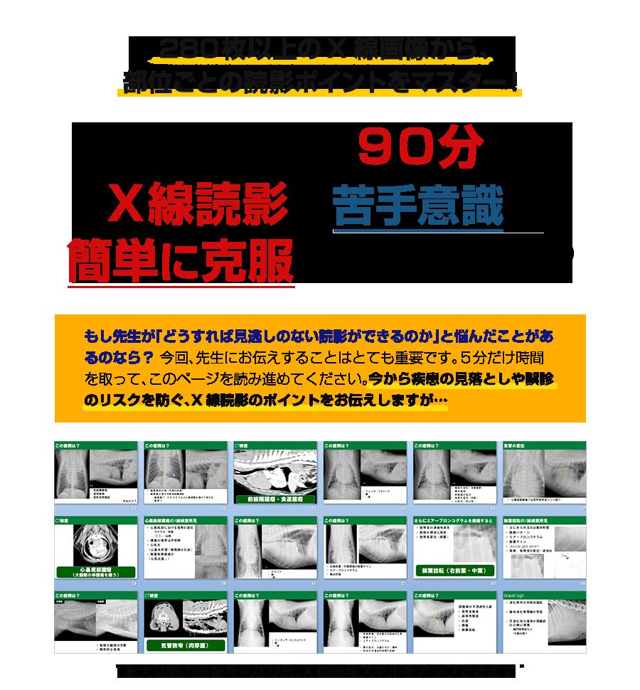 280枚以上のX線画像から、部位ごとの読影ポイントをマスター!なぜ、たった90分でX線読影の苦手意識を簡単に克服できるのか…?
