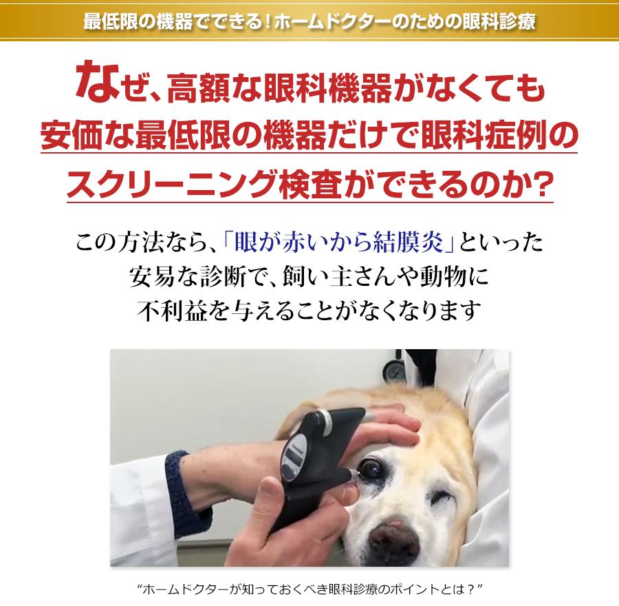 最低限の機器でできる!ホームドクターのための眼科診療 なぜ、高額な眼科機器がなくても安価な最低限の機器だけで眼科症例のスクリーニング検査ができるのか?