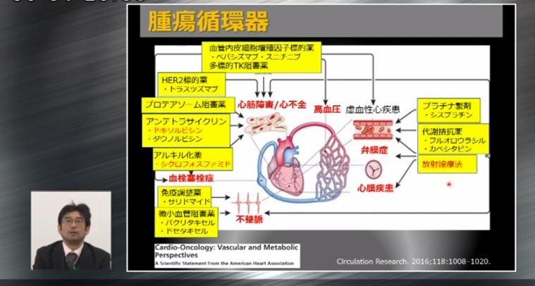 循環器系を中心に、臓器間の相互作用がわかりやすく学べます
