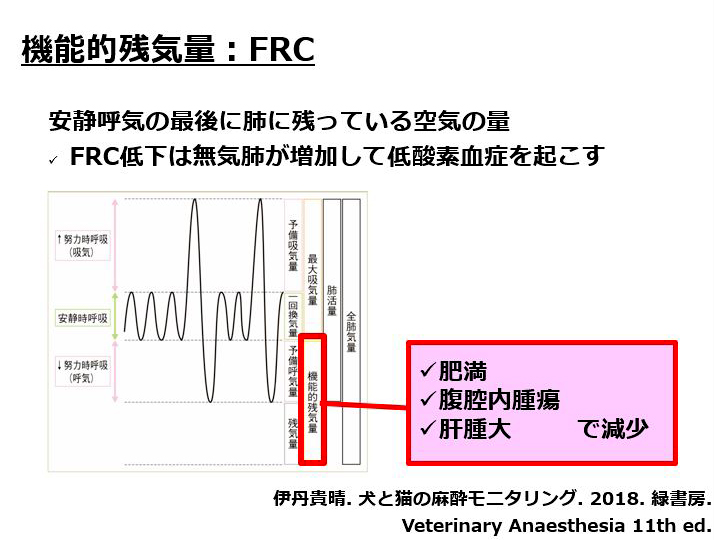 機能的残気量(FRC)