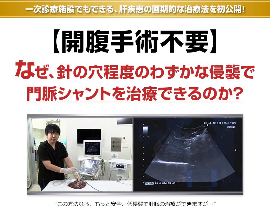 一次診療施設でもできる、肝疾患の画期的な治療法を初公開!【開腹手術不要】なぜ、針の穴程度のわずかな侵襲で門脈シャントを治療できるのか?この方法なら、もっと安全、低侵襲で肝臓の治療ができますが…