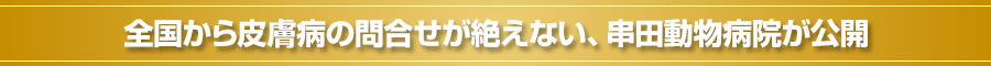 全国から皮膚病の問合せが絶えない、串田動物病院が公開
