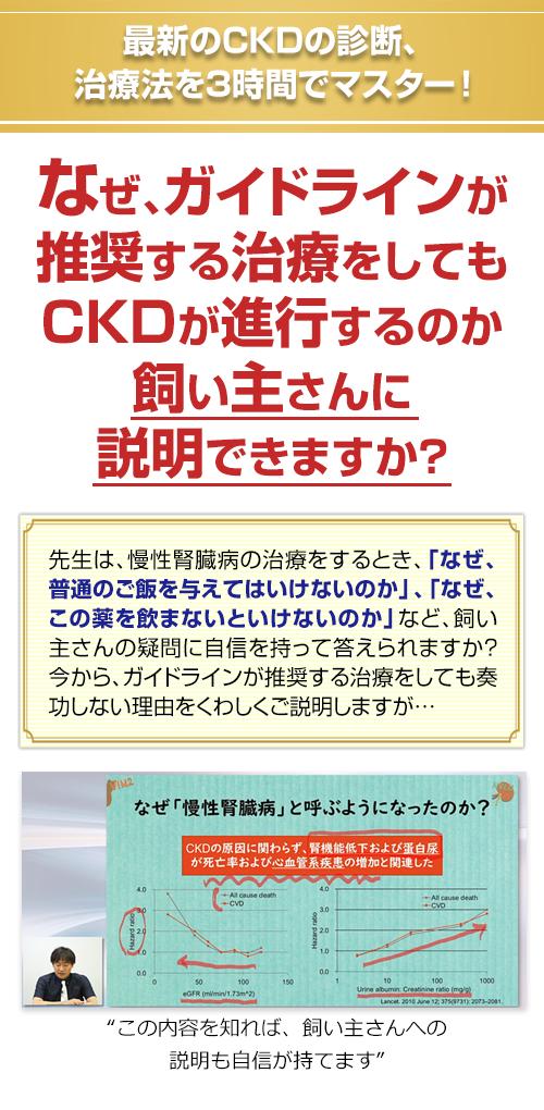 最新のCKDの診断、治療法を3時間でマスター!なぜ、ガイドラインが推奨する治療をしてもCKDが進行するのか飼い主さんに説明できますか?先生は、慢性腎臓病の治療をするとき、「なぜ、普通のご飯を与えてはいけないのか」、「なぜ、この薬を飲まないといけないのか」など、飼い主さんの疑問に自信を持って答えられますか?今から、ガイドラインが推奨する治療をしても奏功しない理由をくわしくご説明しますが…