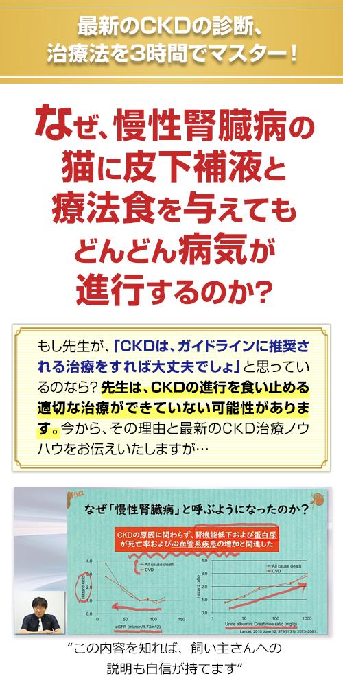 最新のCKDの診断、治療法を3時間でマスター!なぜ、慢性腎臓病の猫に皮下補液と療法食を与えてもどんどん病気が進行するのか? もし先生が、「CKDは、ガイドラインに推奨される治療をすれば大丈夫でしょ」と思っているのなら?先生は、CKDの進行を食い止める適切な治療ができていない可能性があります。今から、その理由と最新のCKD治療ノウハウをお伝えいたしますが…