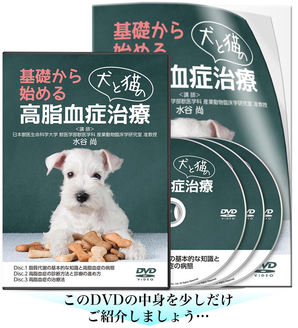 基礎から始める犬と猫の高脂血症治療