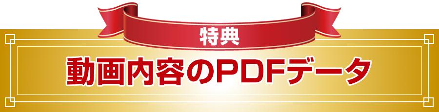 特典 レジュメPDFデータ