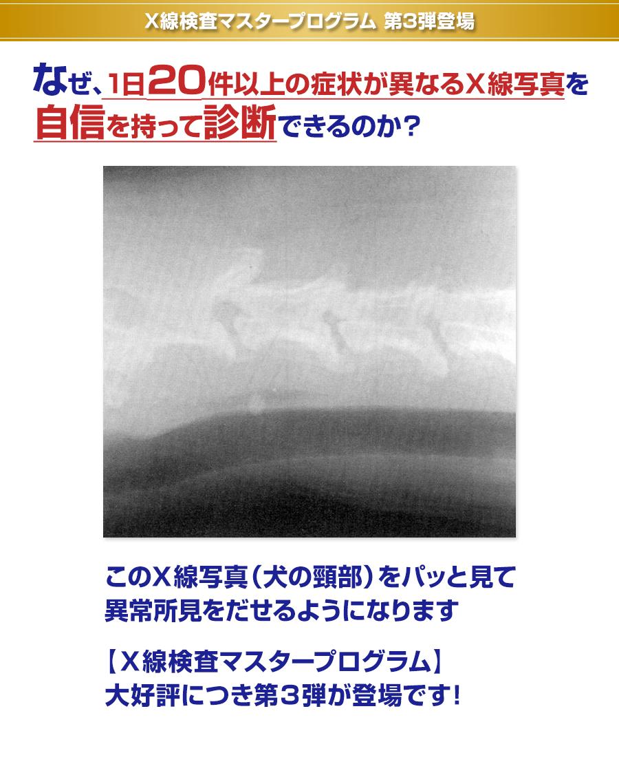 X線検査マスタープログラム 第3弾登場 なぜ、1日20件以上の症状が異なるX線写真を自信を持って診断できるのか?