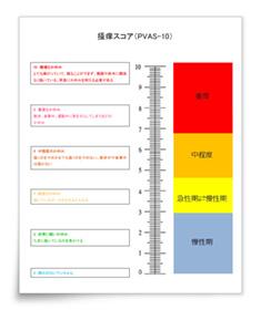 「PVAS-10」の評価シート