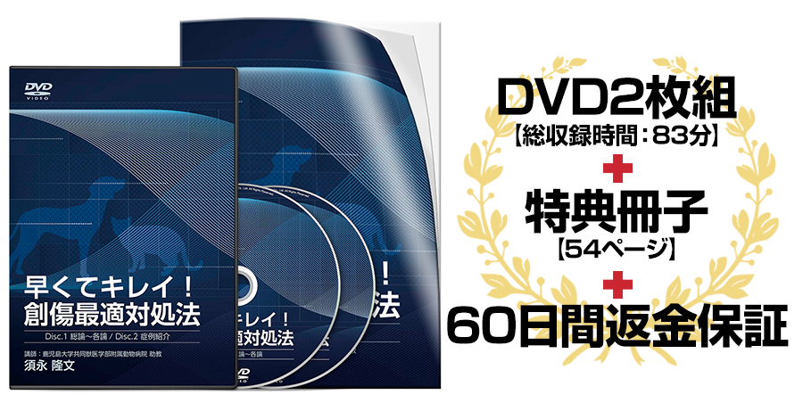 早くてキレイ!創傷最適対処法DVD