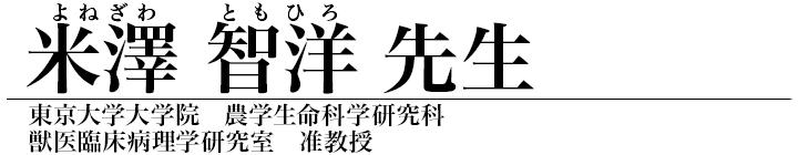 米澤智洋先生
